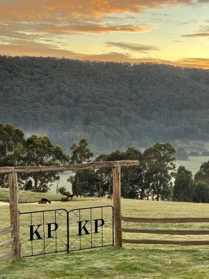 KP sunrise 300x400 - KP sunrise
