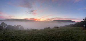 Misty sunrise 300x145 - Misty sunrise