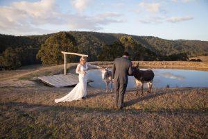 Wedding 17 300x200 - Wedding 17